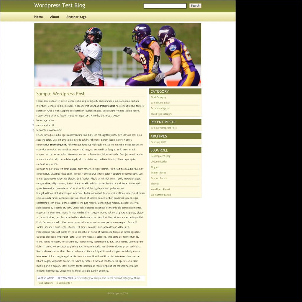 download Sport TalkDev Wordpress Theme theme